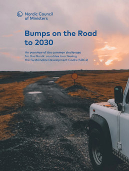 bumps on the road to 2030 Sustainia