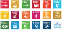 asesoria ODS, nuestros servicios