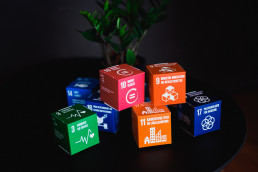 Strategic SDG mapping, Advisory, and Reporting, Telecommunications company, Sustainable Development Goals