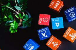Strategic SDG Advisory and Reporting